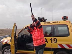 Bird control personnel at CDG.
